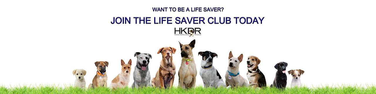 Life-Saver-Club-Banner