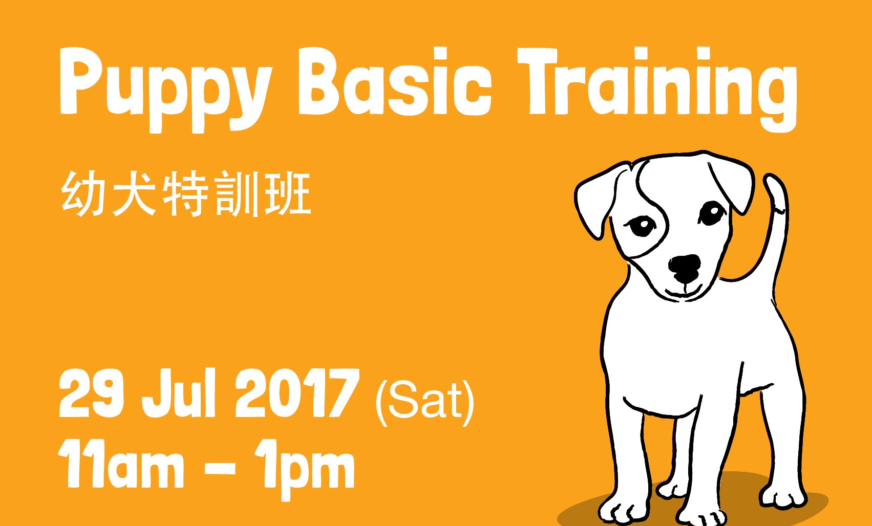 Puppy Basic Training