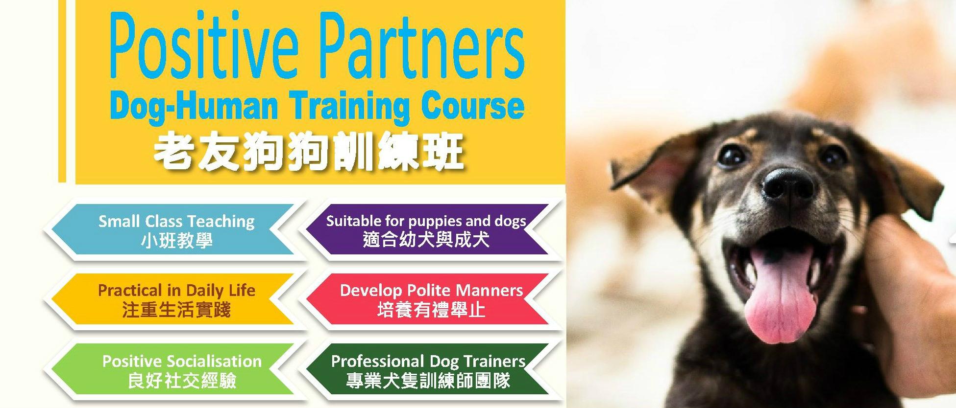 Positive-Partners